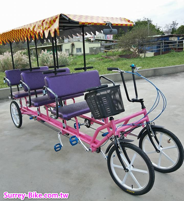 Tourist Rickshaw for 6 people