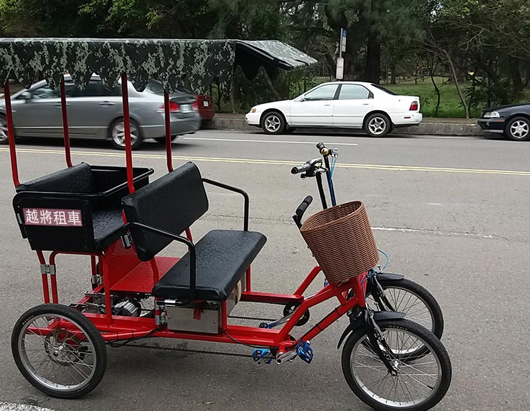 Family style Electric Motor Bicycle Tourist Cart
