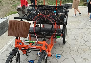 Electri rickshaw for 4 people