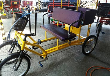 Rickshaw for family