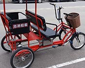 Electric rickshaw for family