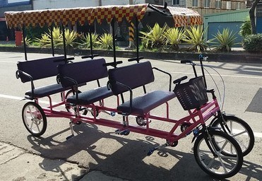 Rickshaw for 6 person